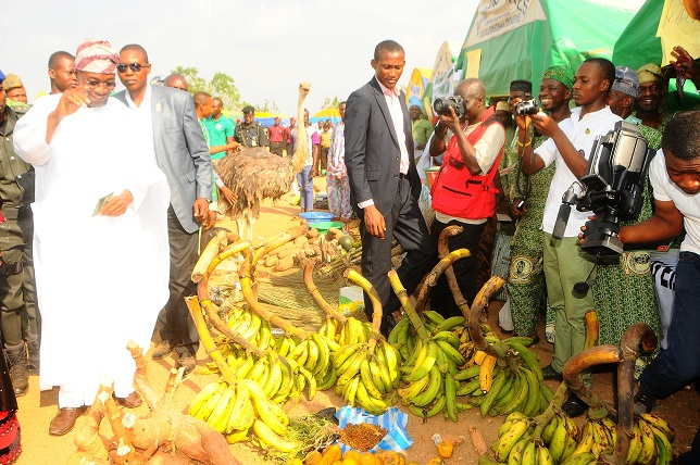 Governor State of Osun, Ogbeni Rauf Aregbesola, inspecting farm produce, during 2013 Osun Farmers Festival, organised by the Ministry of Agriculture and Food Security in conjunction with all Farmers Association in the State, held at the Government Technical College, Osogbo, State of Osun